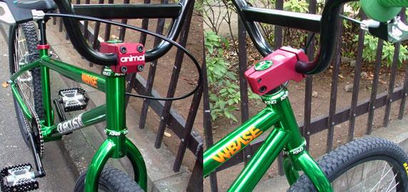 d1 candy green detail