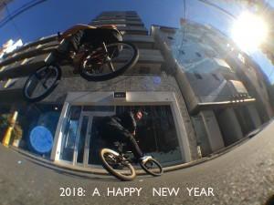 2017_12_28_newyear_pic